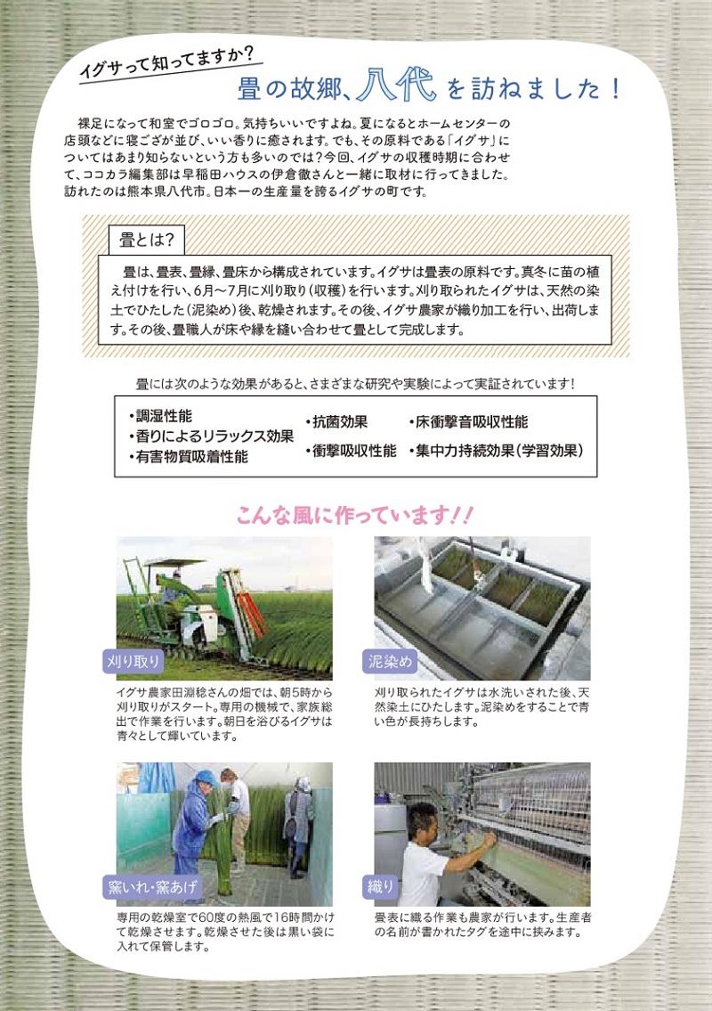 cocokara8月号(2/8ページ)